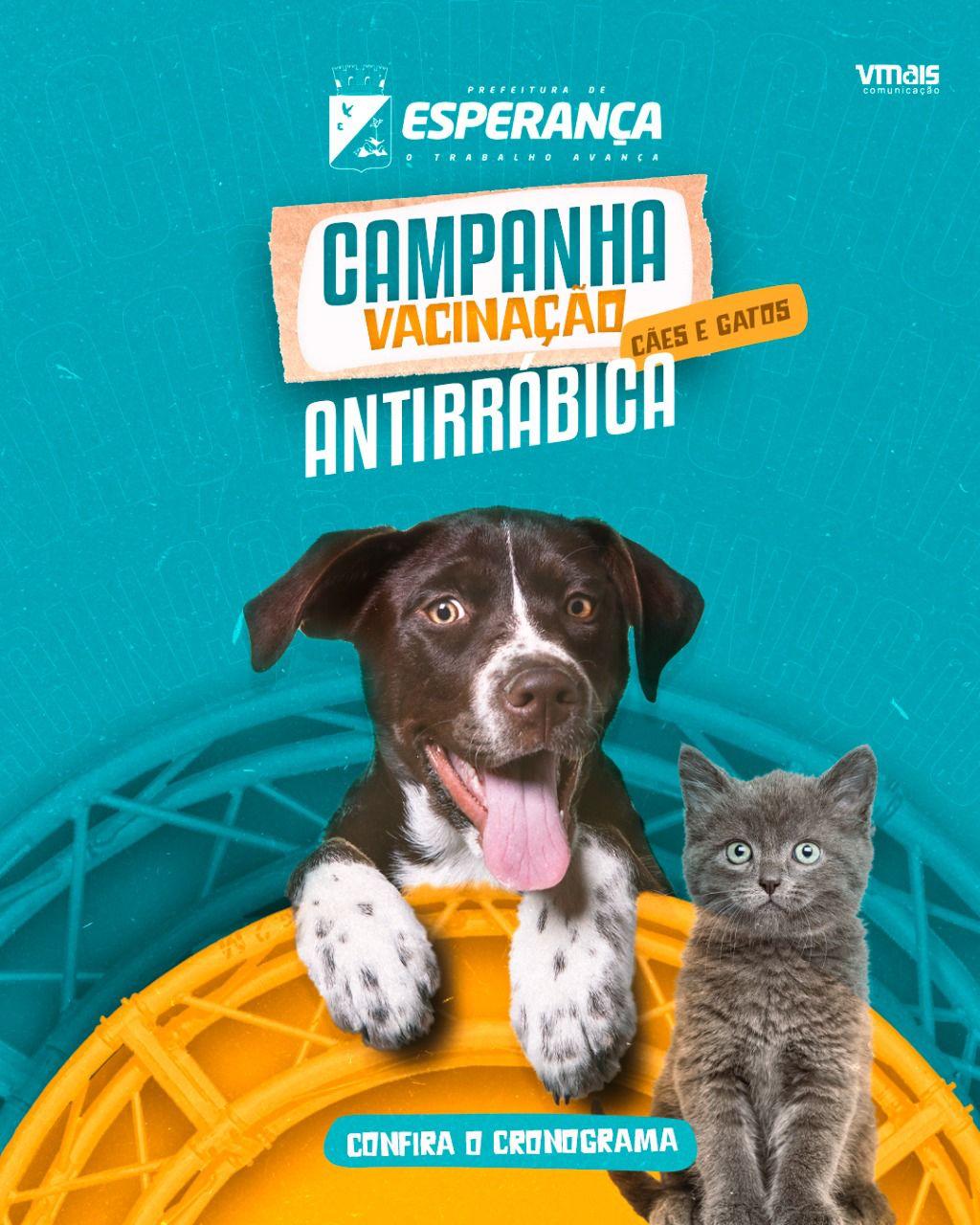 Calendário de vacinação contra a raiva canina e felina